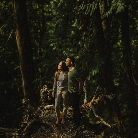 chilliwack forest engagement