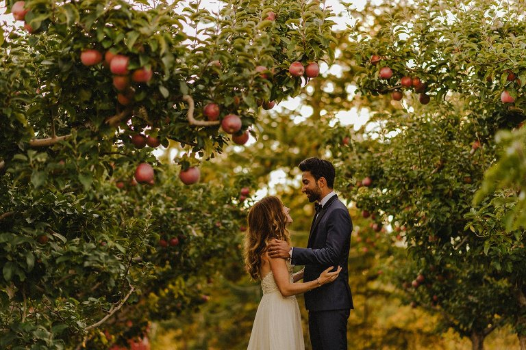 sunset wedding in orchard