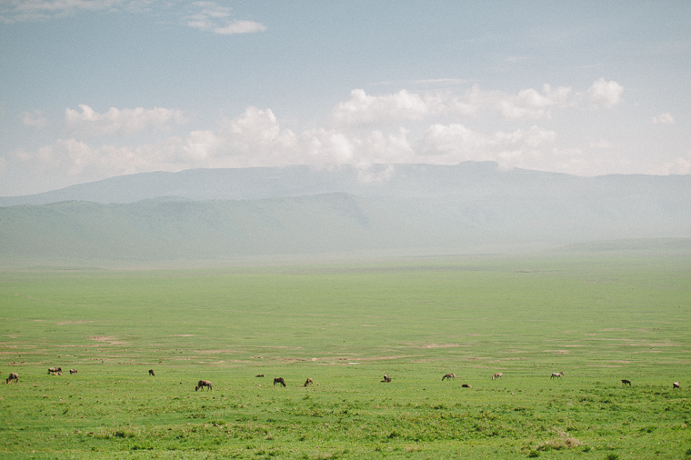 Ngorogoro Crater Elopement