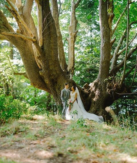 poets cove resort wedding portrait
