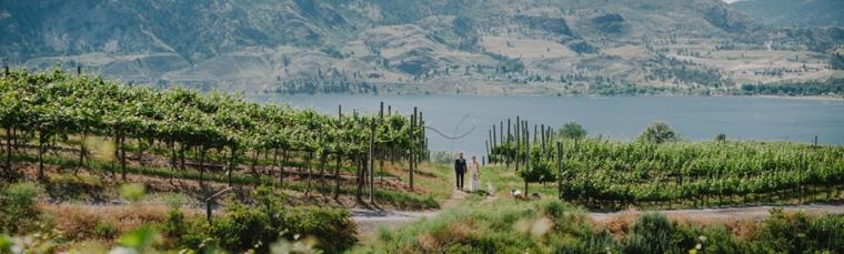 best kelowna winery wedding venues