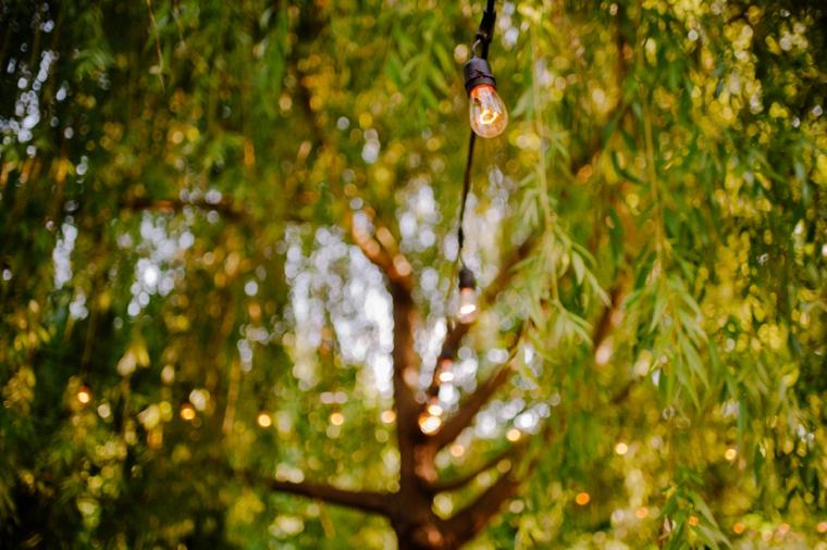 outdoor willow tree wedding decor