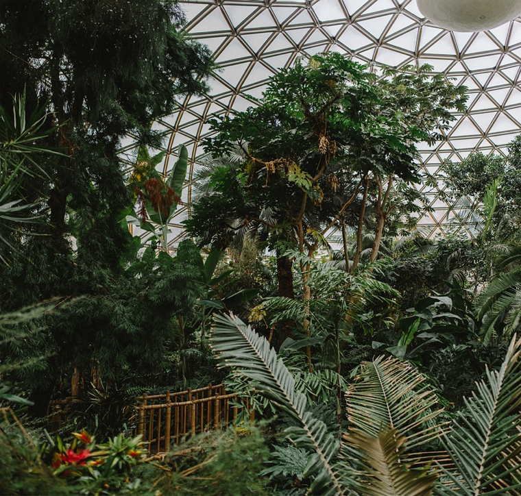 Bloedel Conservatory in Vancouver