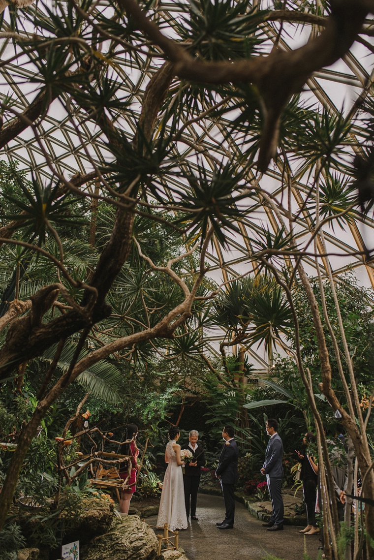 Vancouver wedding at bloedel conservatory
