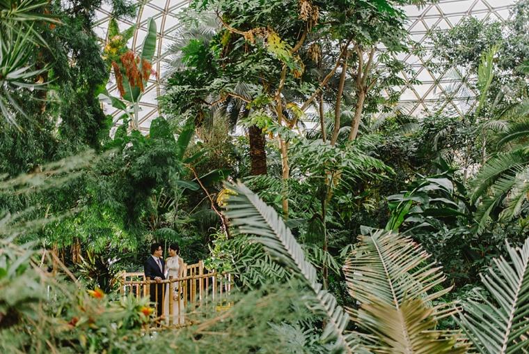 vancouver rainforest wedding
