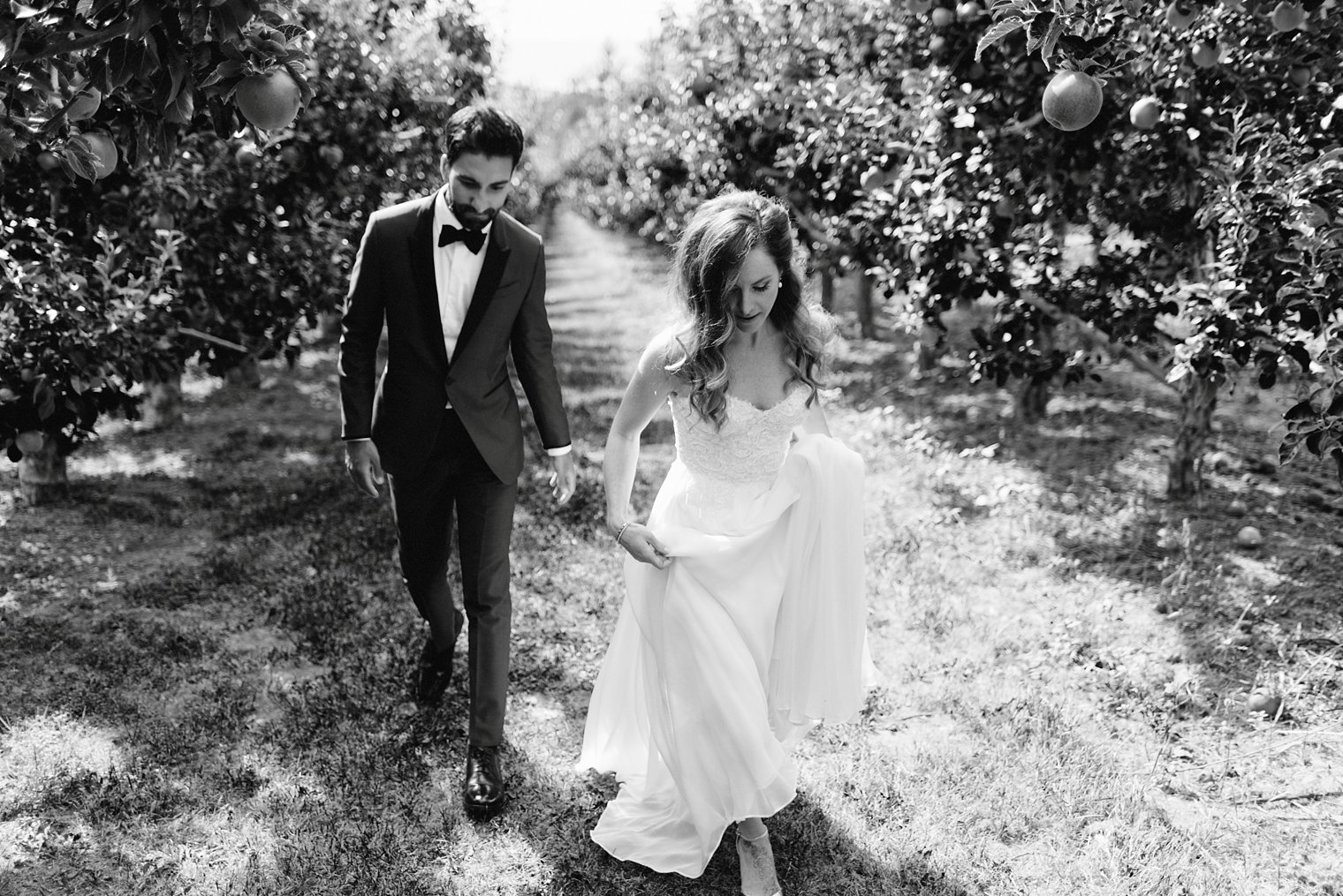 stylish bride and groom walking through orchard
