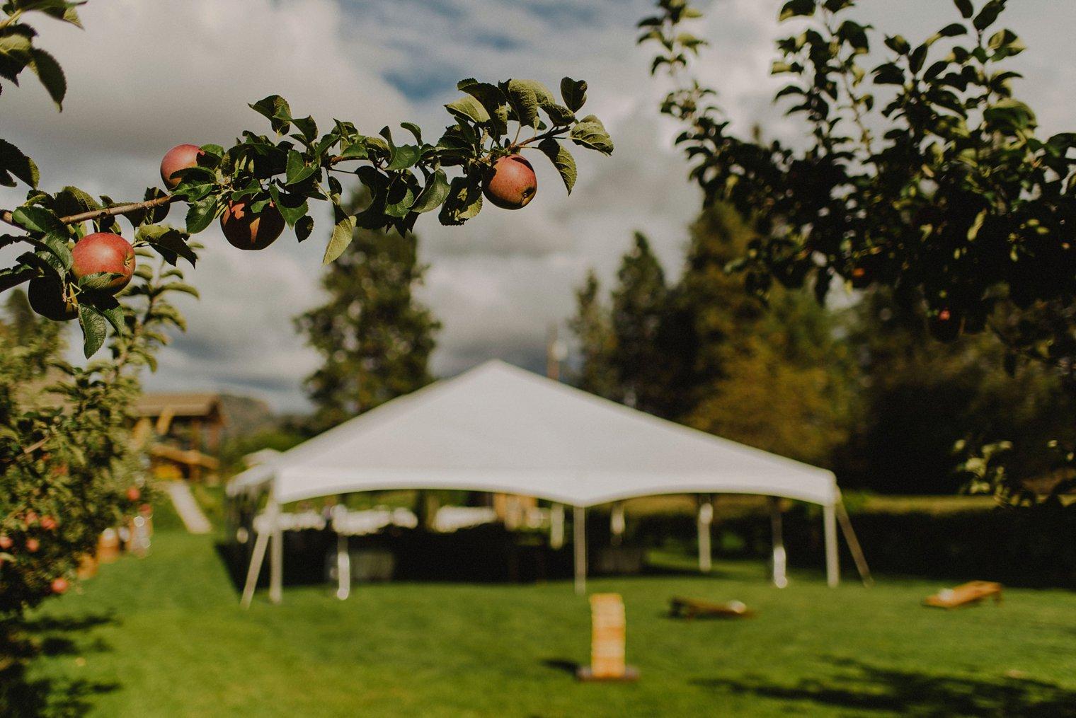 best kelowna orchard wedding venue
