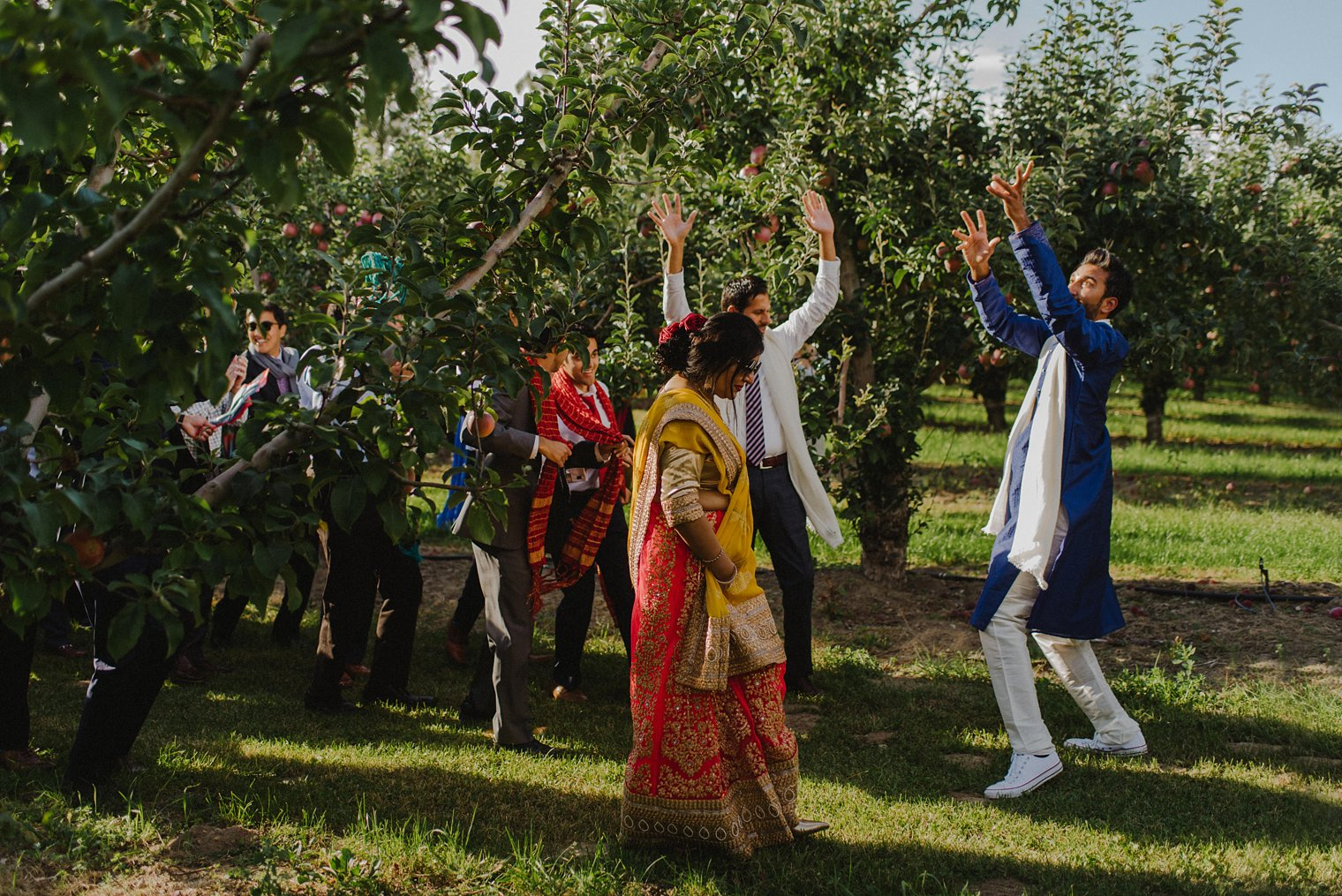 indian groom procession through an orchard