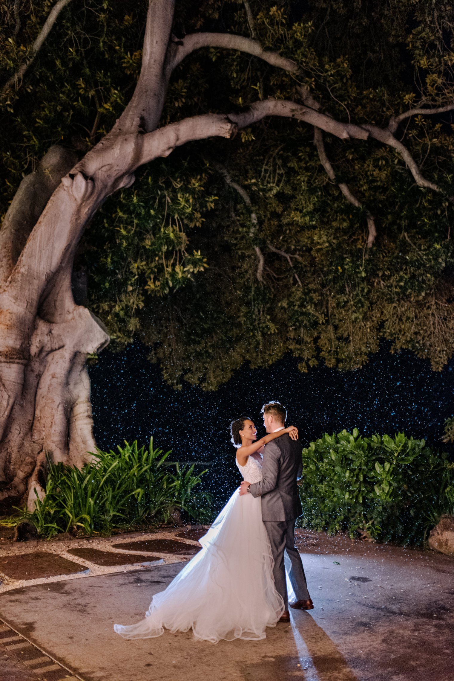 first dance under banyon tree in maui