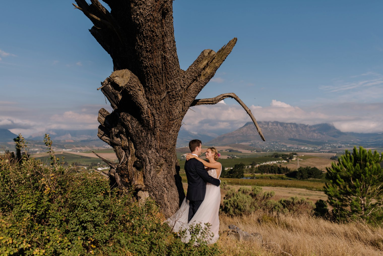 wedding photos at landtscap in stellenbosch