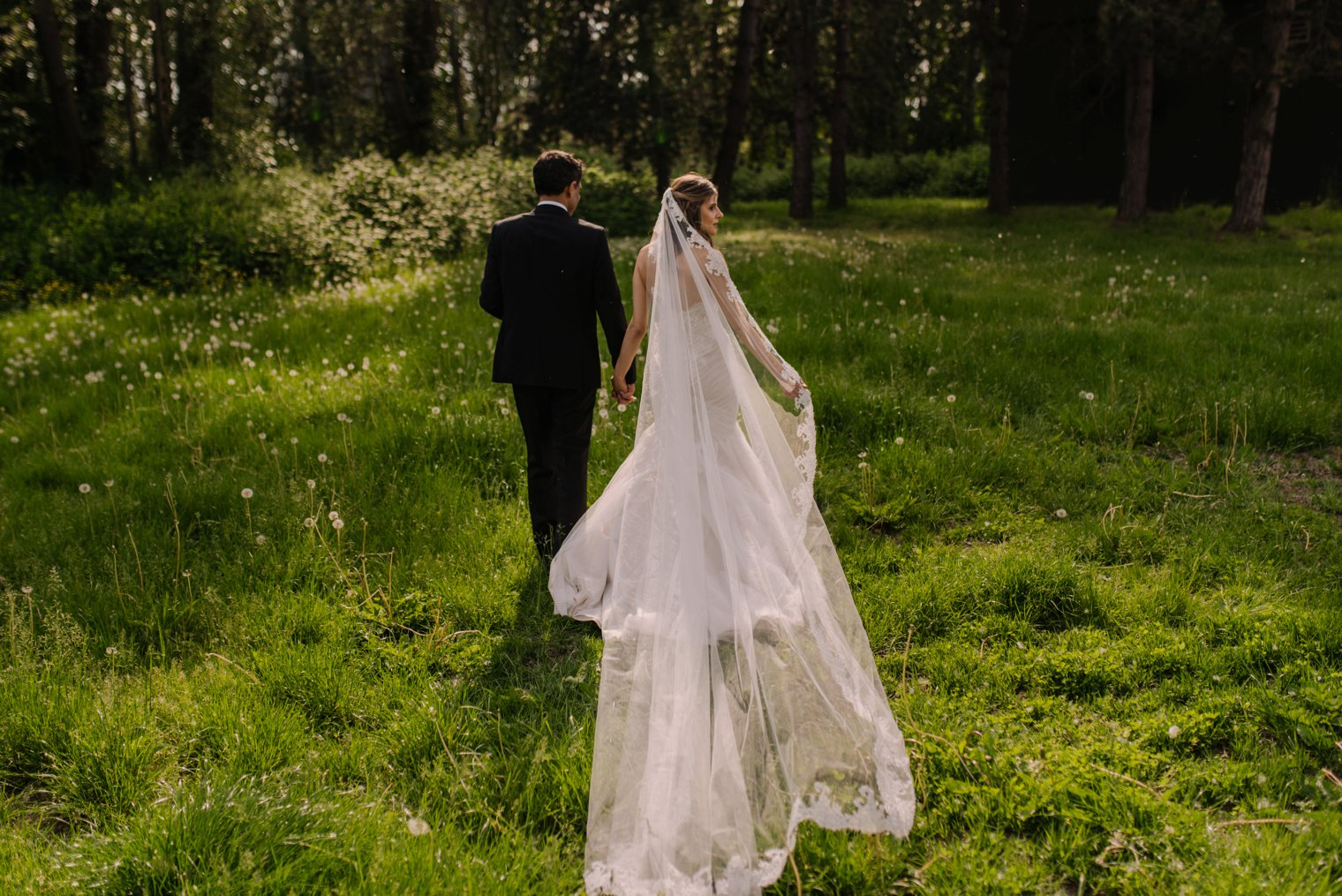 romantic field wedding photos in vancouver